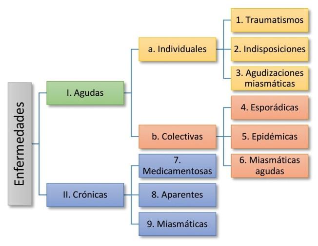 Clasificación de las enfermedades en la homeopatía