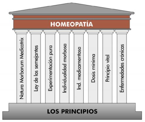 Los principios, bases o fundamentos de la homeopatía